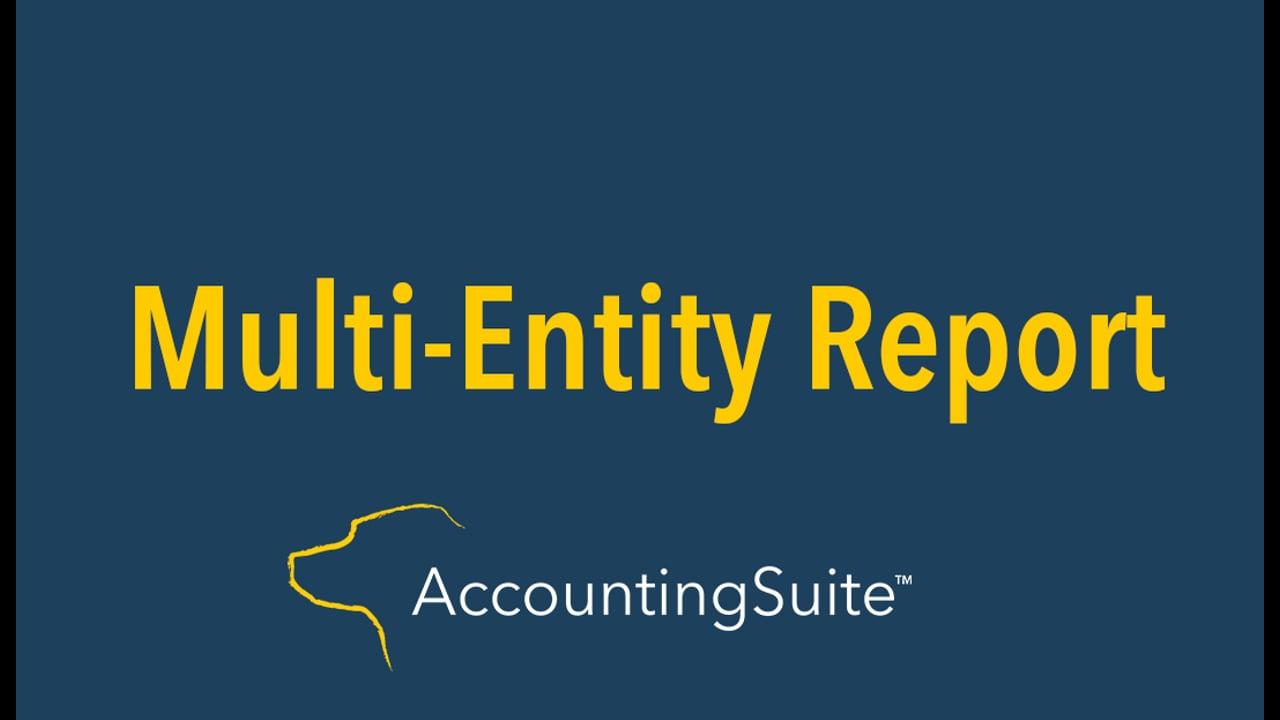 multi entity report
