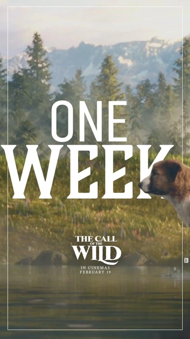 """""""1 WEEK"""""""