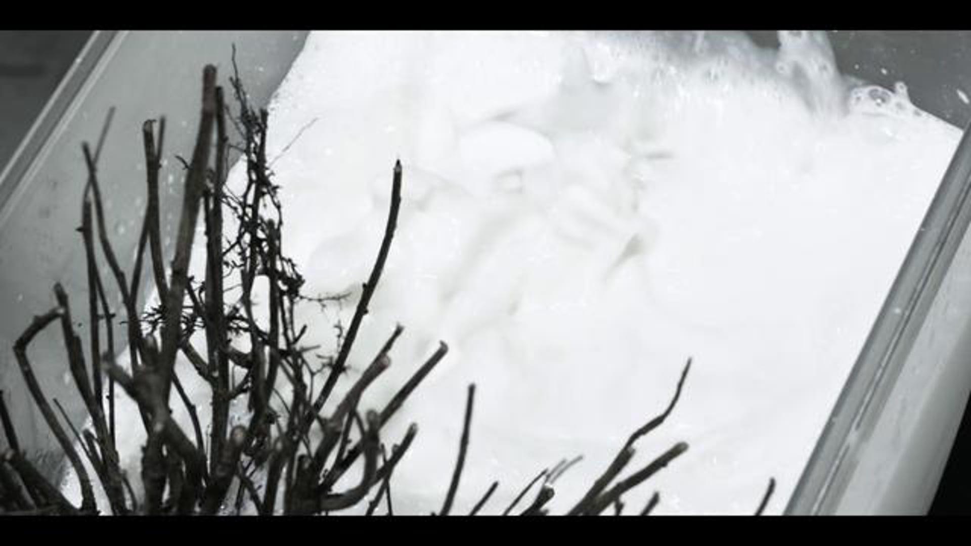 (music video) INTERFERENZE / My resurrection