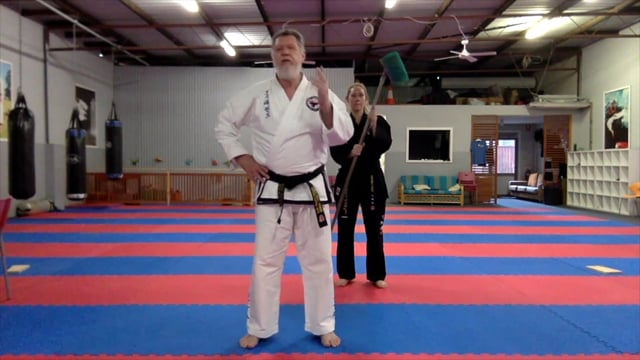 Excerpts from Online Taekwondo with GM Frost 270320