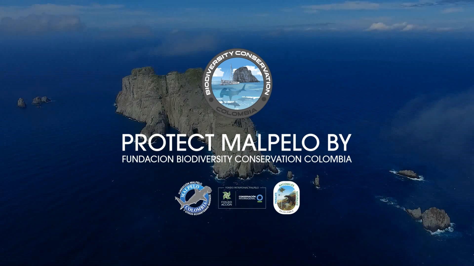 FUNDACION BIODIVERSITY CONSERVATION COLOMBIA