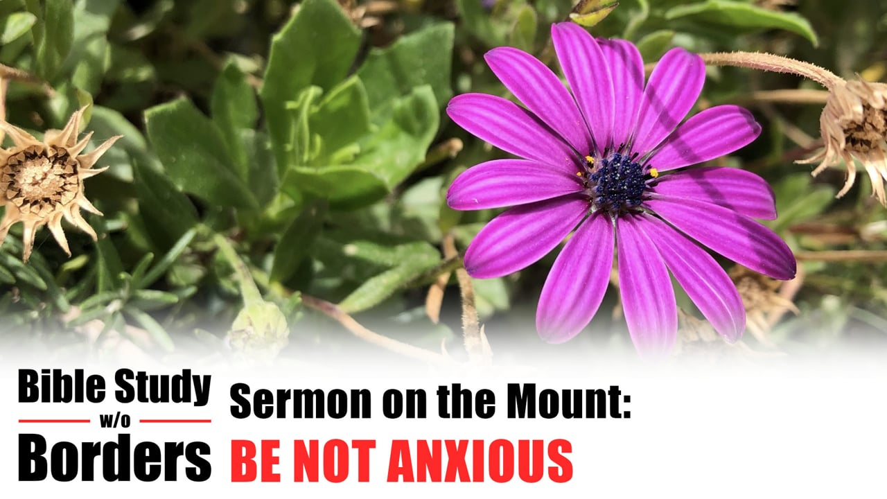 Be Not Anxious - Bible Study Without Borders: Ep. 6 (Matt. 6:25-34)