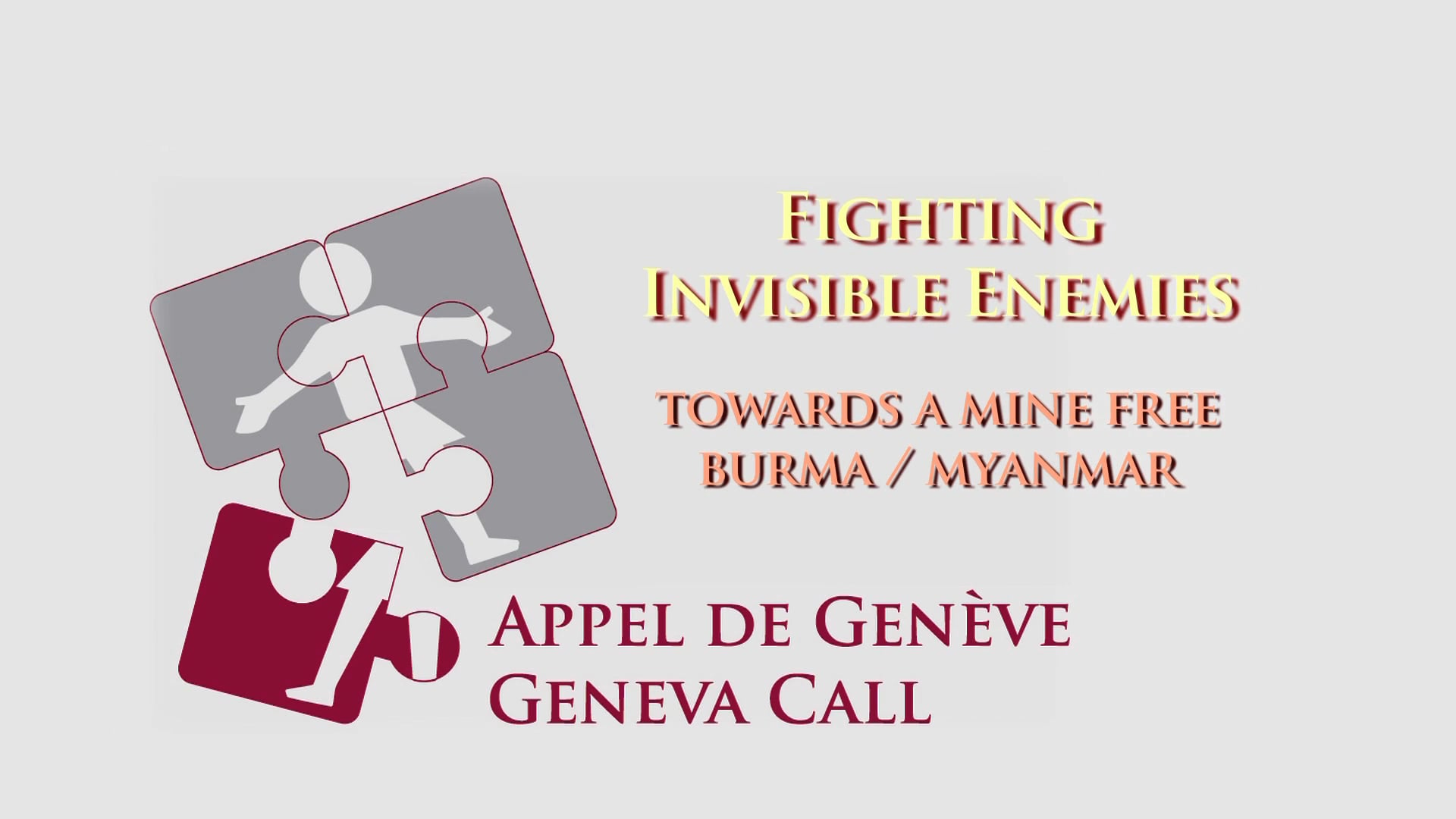 Fighting Invisible Enemies - English