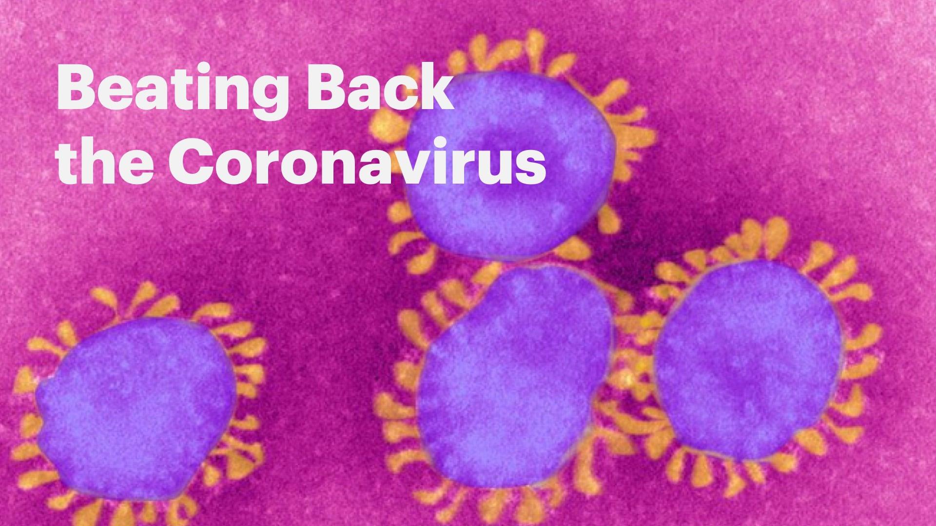 Beating Back the Coronavirus