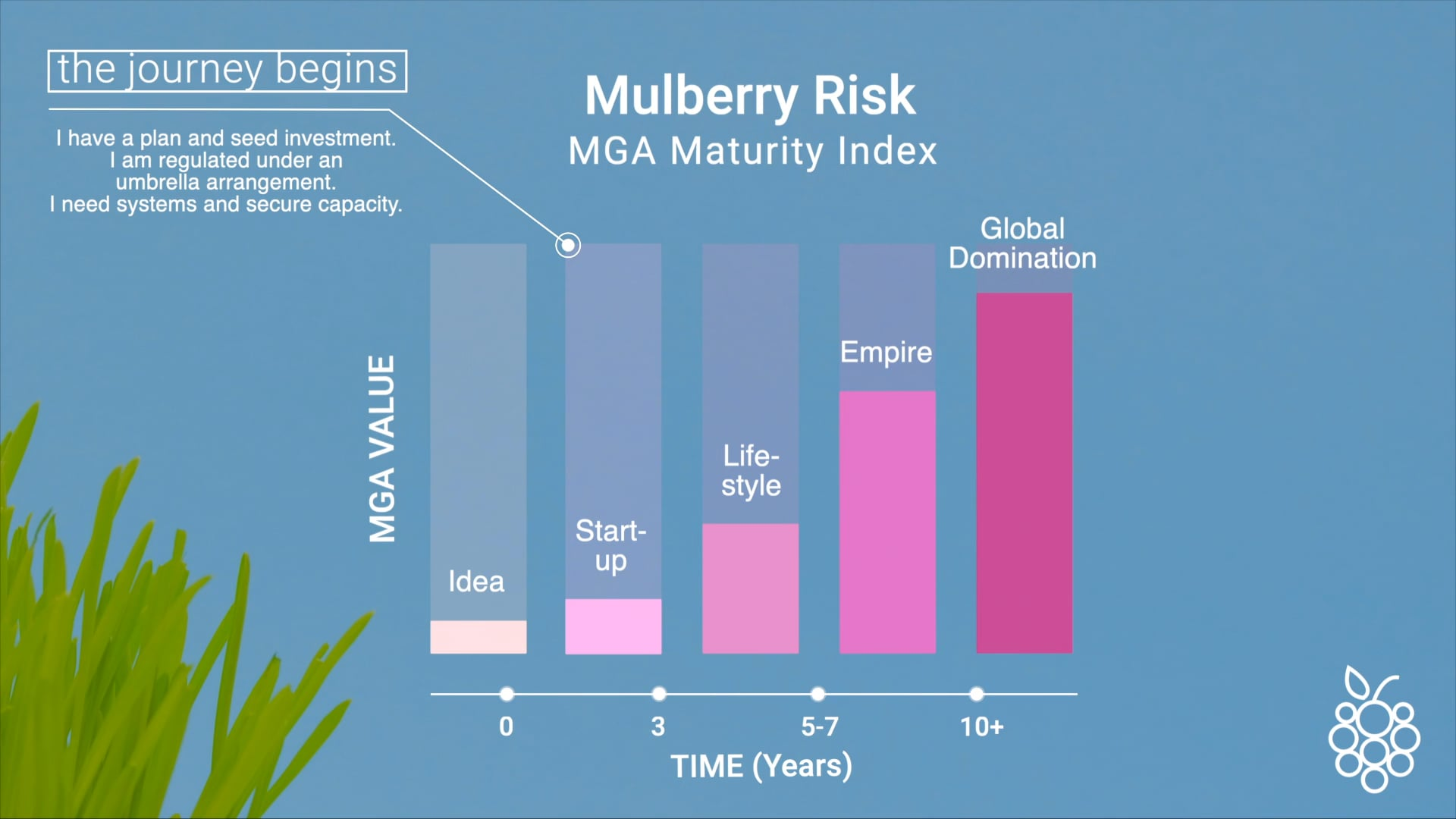 Mulberry Risk MGA Maturity Index