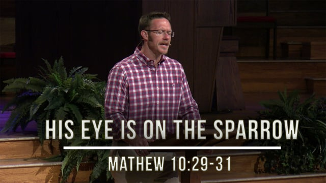 """May 8, 2020   Stories of Hope: His Eye Is On The Sparrow""""   Matthew 10:29-31"""