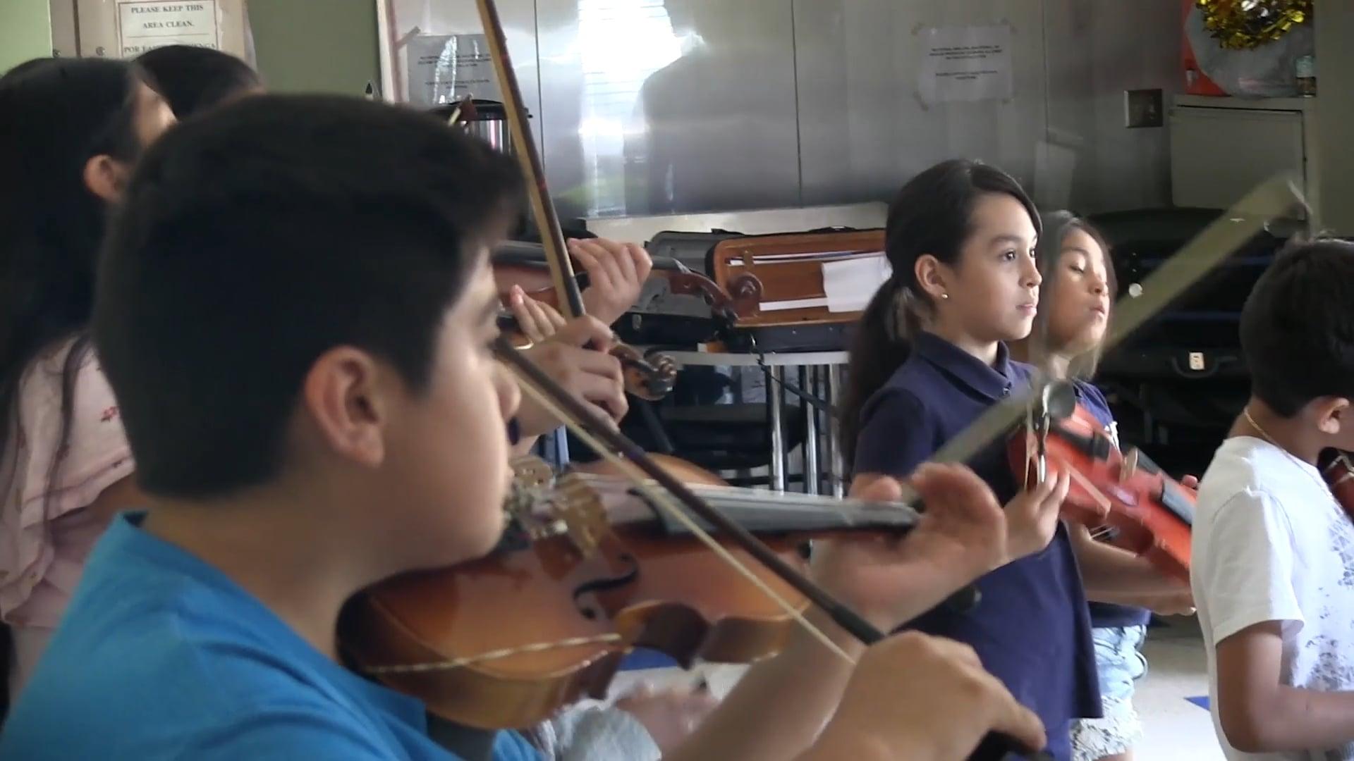 Bienestar Violins