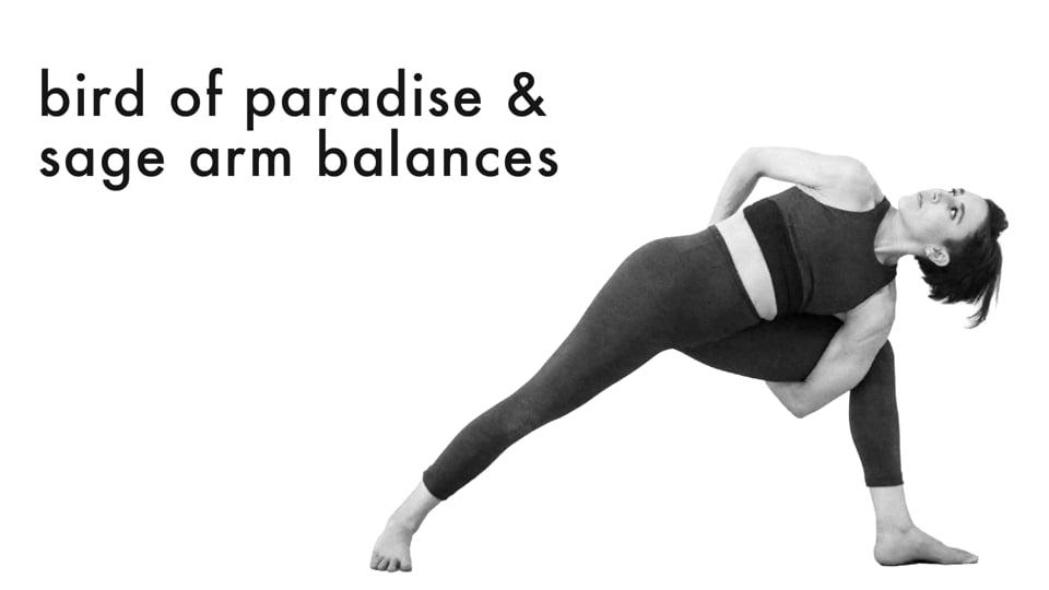 Hip Openers & Arm Balances 4