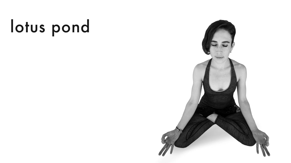 Hip Openers & Arm Balances 5