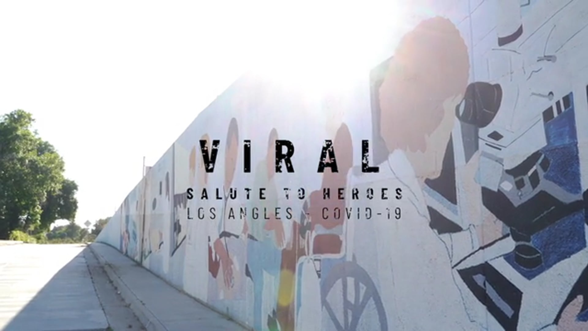 VIRAL (SALUTE TO HEROES)