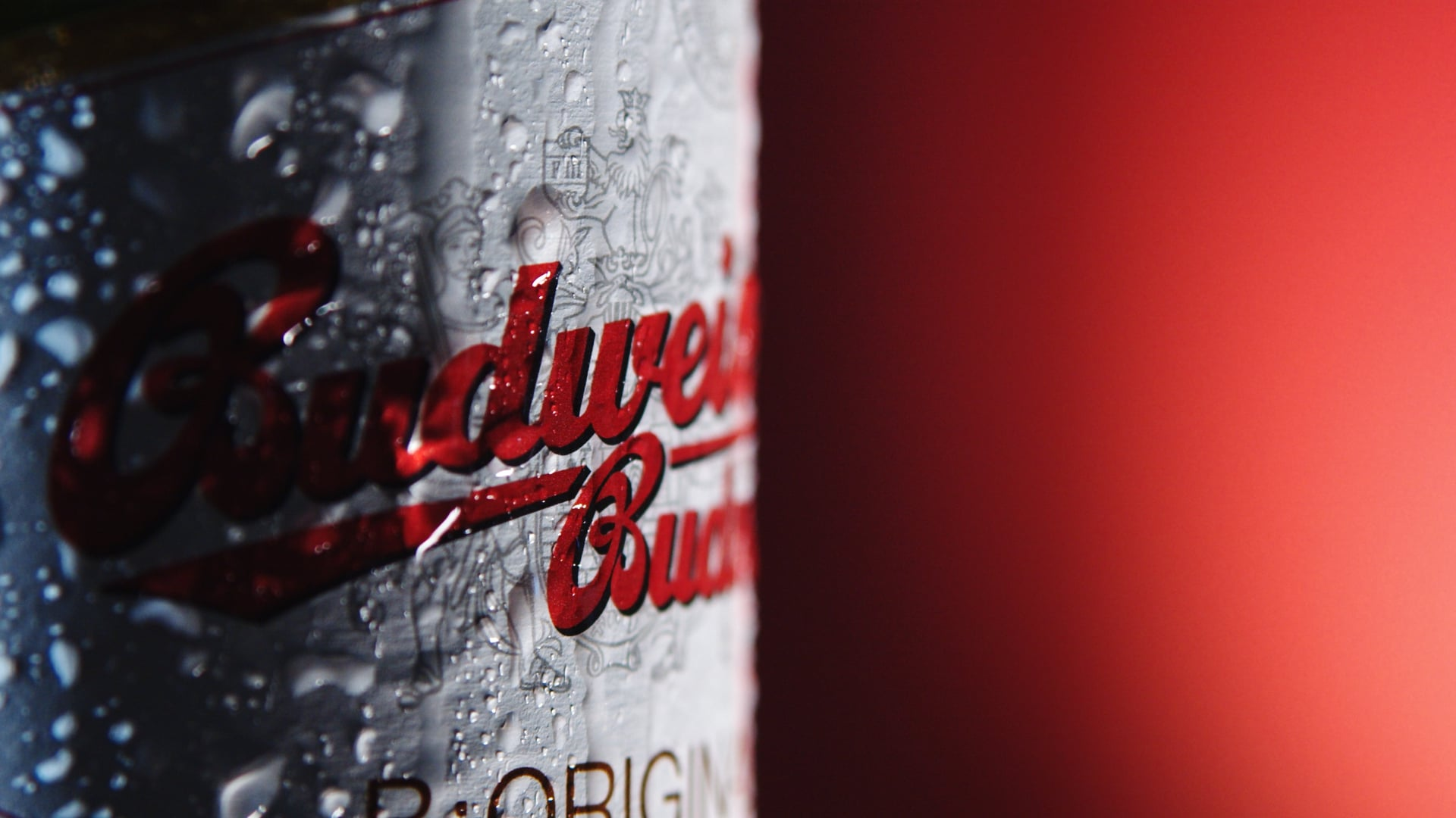 Commercial for Budweiser Beer