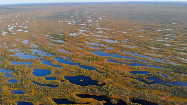 Latvian Nature Airview-Nature Relax Video