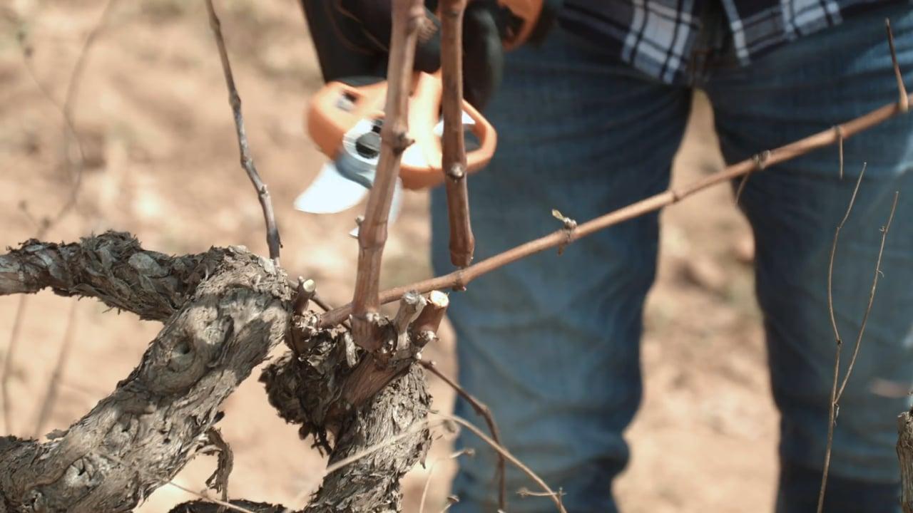 Bahco Vineyard Cordless Tools