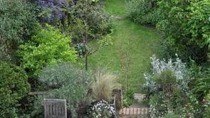 Averil's garden
