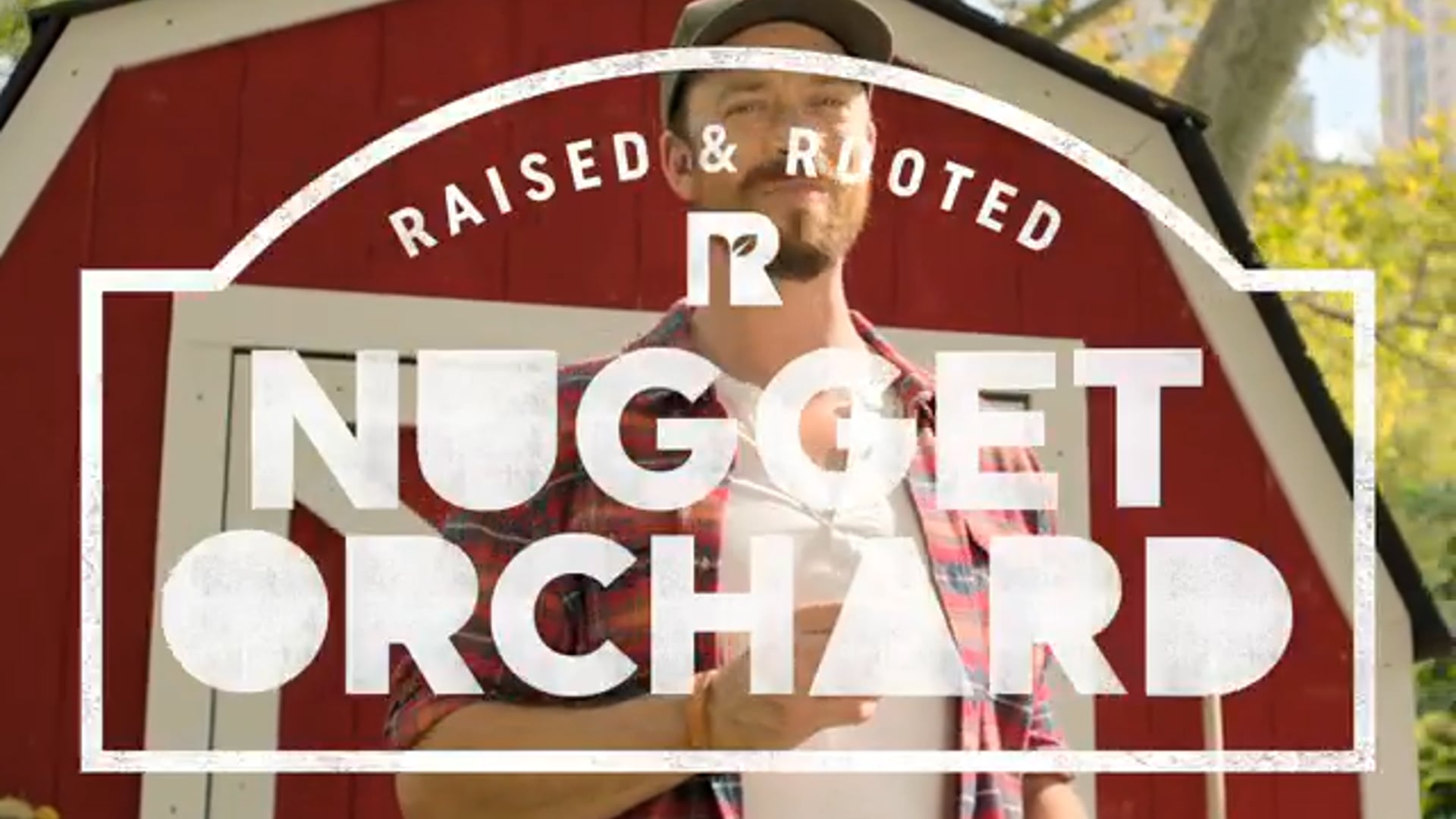 Ryan Andes - Raised and Rooted Nuggets by Tyson : Web :06