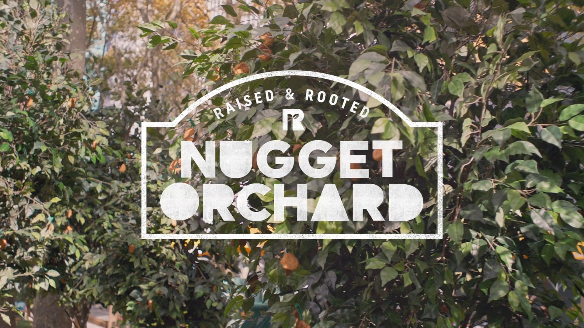 Ryan Andes - Raised and Rooted by Tyson Nugget Season Commercial : TV Final