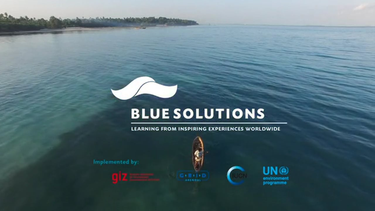 Blue Solutions - voices from the ocean community