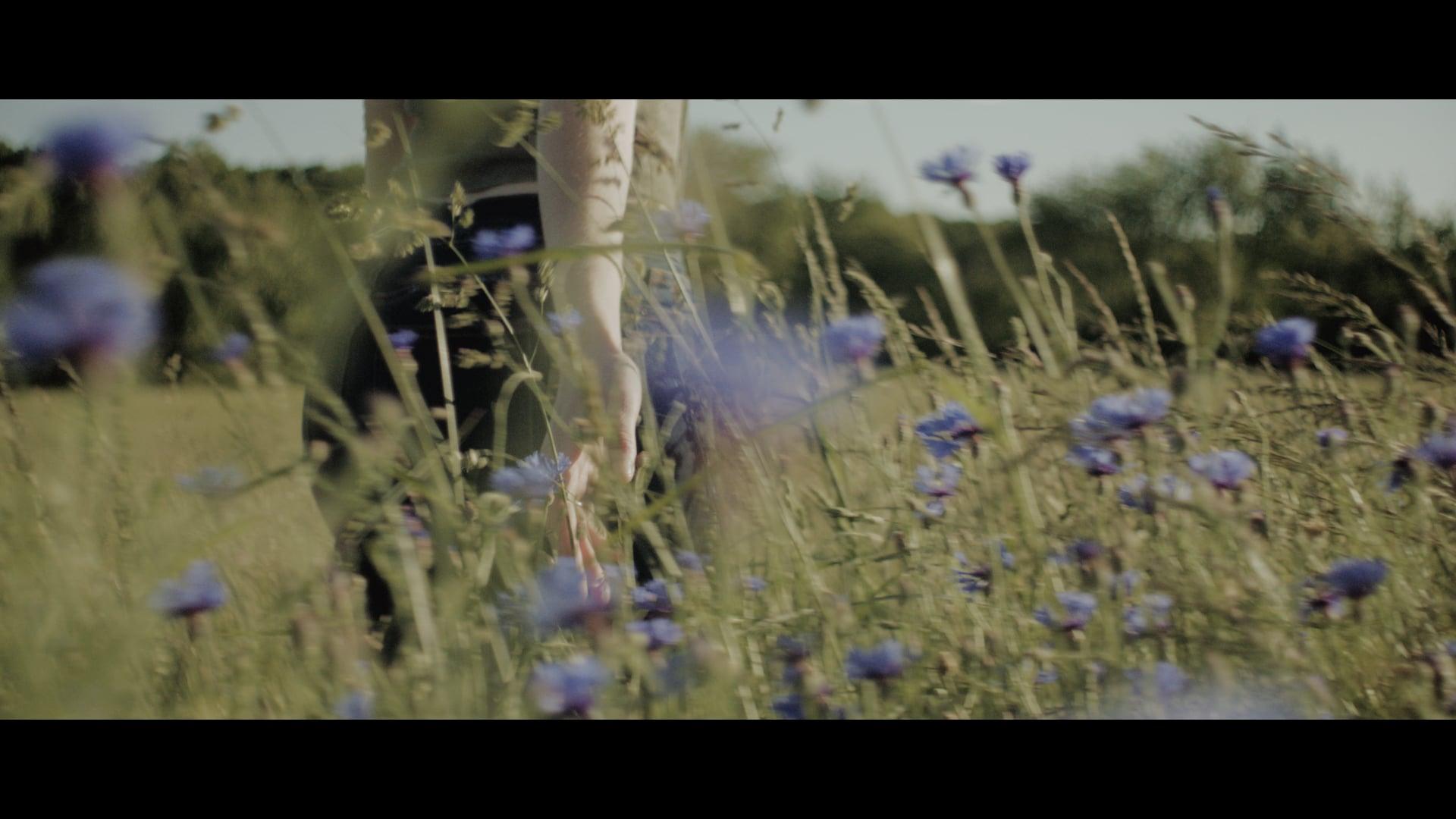Skylark (2020) | ARRI ALEXA Short Film