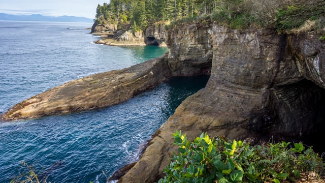 View from Cape Flattery Trail