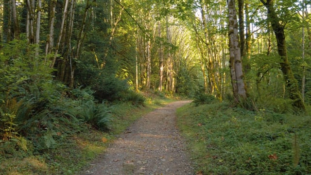 Red Town and Cave Hole Trail, Renton, Washington State - Short Preview