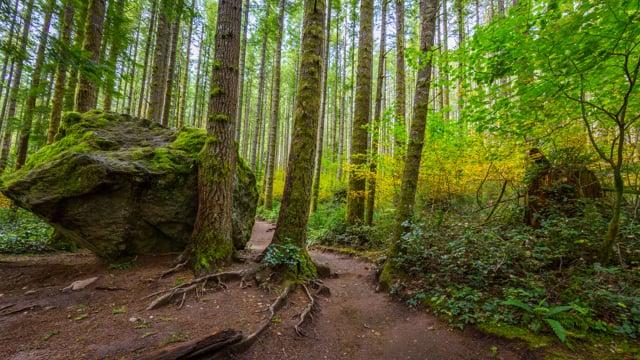 Rattlesnake Ledge Trail, Washington State, USA