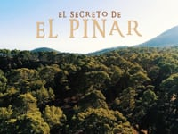 EL SECRETO DEL PINAR by Bestial Race