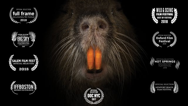 """""""RODENTS OF UNUSUAL SIZE"""" - Trailer"""