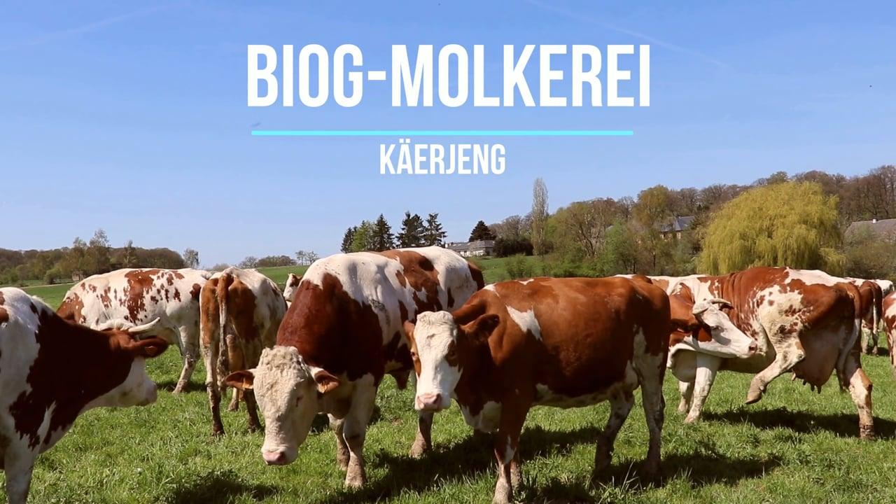 Im Mittelpunkt der OIKOPOLIS-Gruppe stehen faire Preise für die Produzenten und qualitativ hochwertige Lebensmittel für die Verbraucher aus kontrolliert biologischer und biodynamischer Landwirtschaft. Um dies für die Milchprodukte sicherzustellen, wurde im Jahr 2015 die Biog-Molkerei in Bascharage gegründet. Sie ermöglicht der Bio-Bauere- Genossenschaft Lëtzebuerg die eigenständige und unabhängige Verarbeitung ihrer Bio-Milch und eine artgerechte, ökologische Milchviehhaltung.