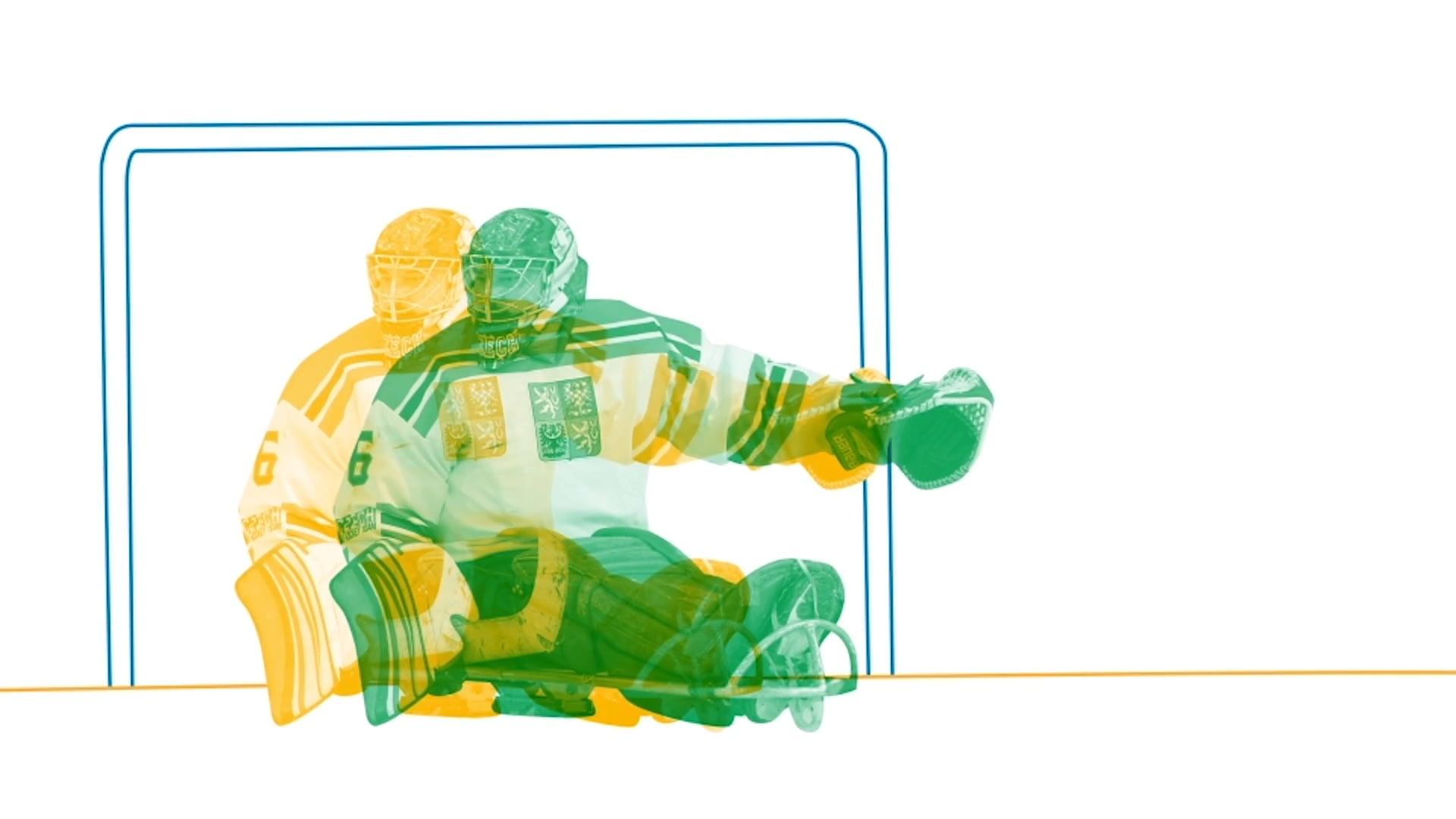장애인 아이스 하키 (Para Ice Hockey)