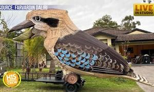 A man in Australia decided to make a huge Kukaburra so he did...