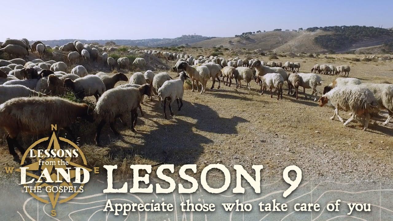 Lesson #9: Appreciate those who take care of you