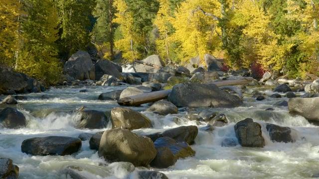 Wenatchee River - - Short Preview