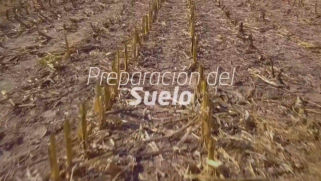 PLA S.A. - CICLO EN TIERRA