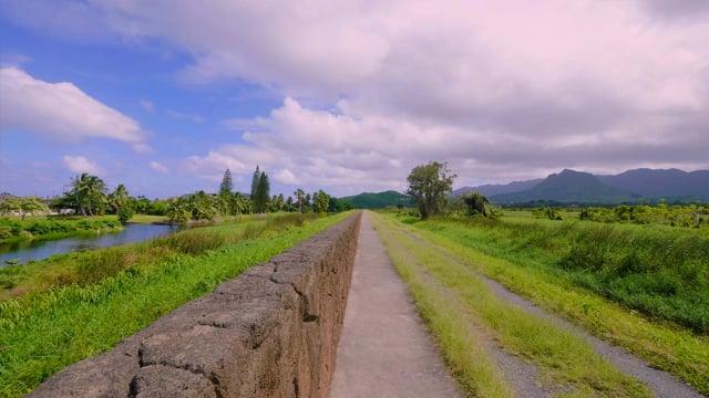 Kawainui Marsh Trail, Oahu, Hawaii  - 4K HDR