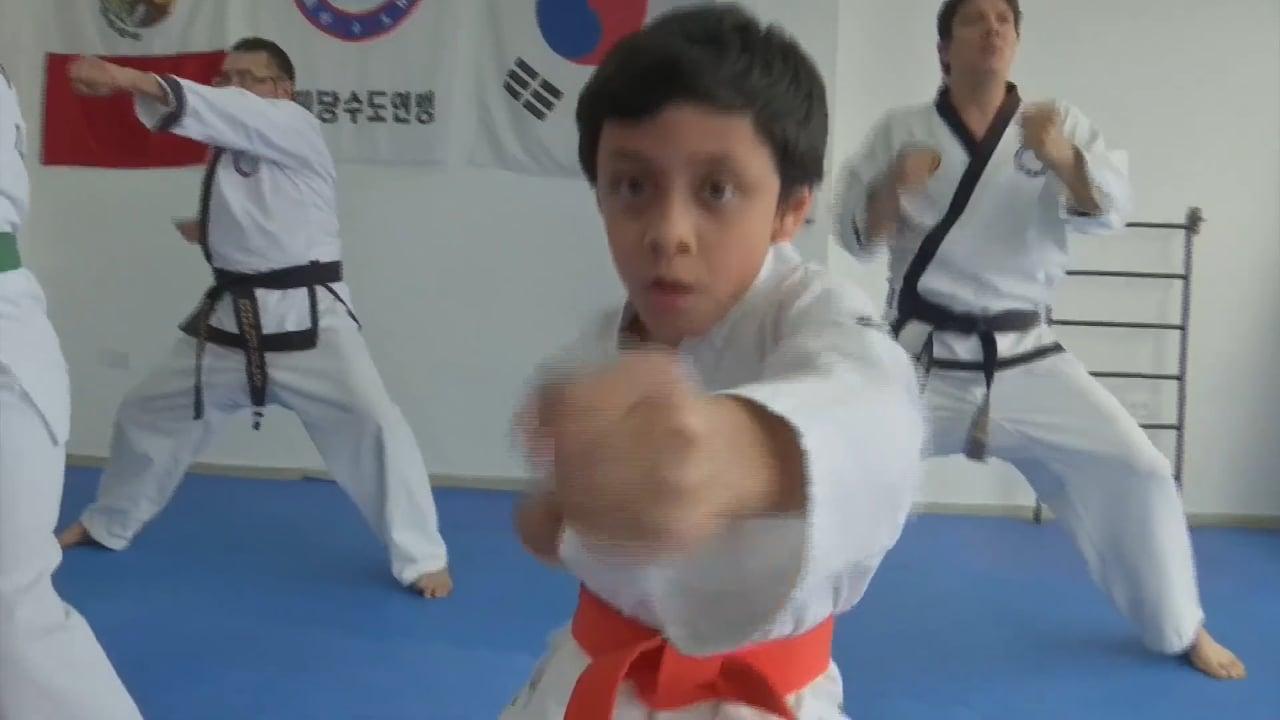 Adrian Mendieta Lozada