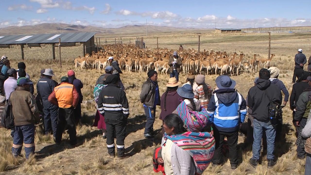 I custodi dell'oro delle Ande - Tessendo la solidarietà (Perù)