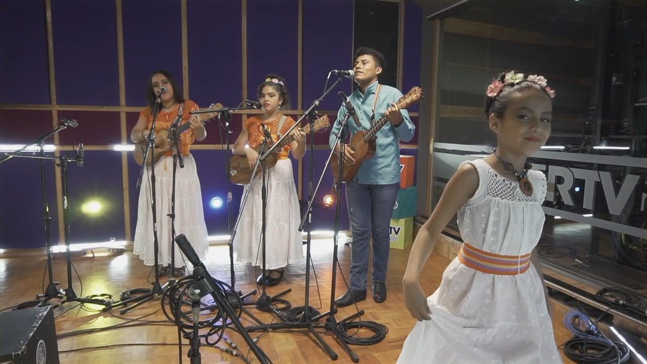 Son de Luna Ayotl - Los Cuiles