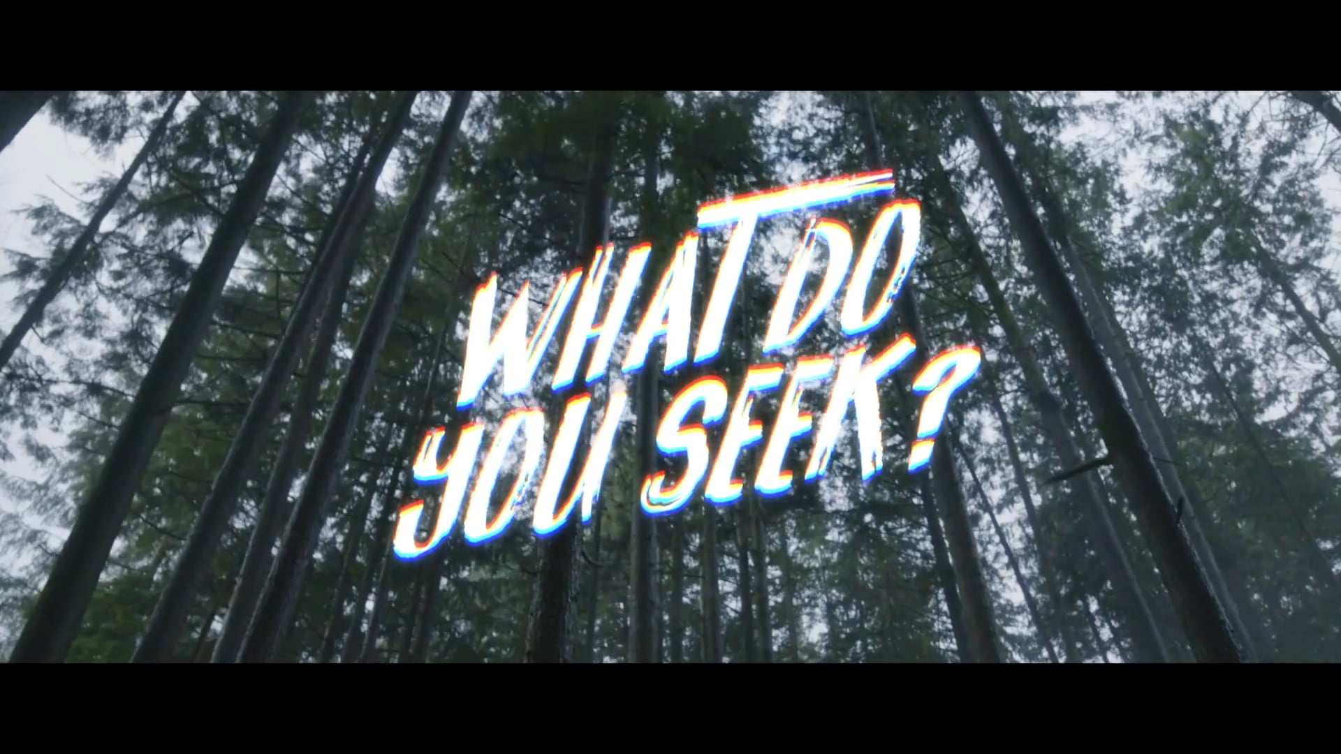 The Search  Episode 1 Trailer