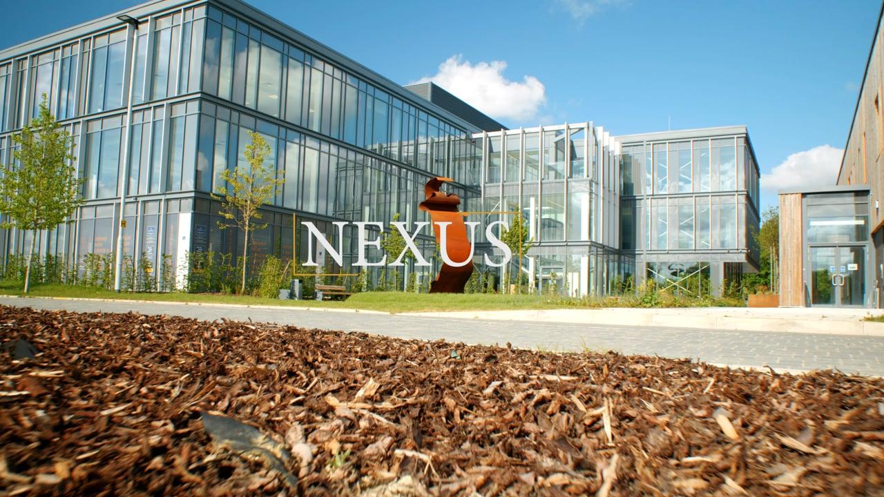 Nexus - Harlow