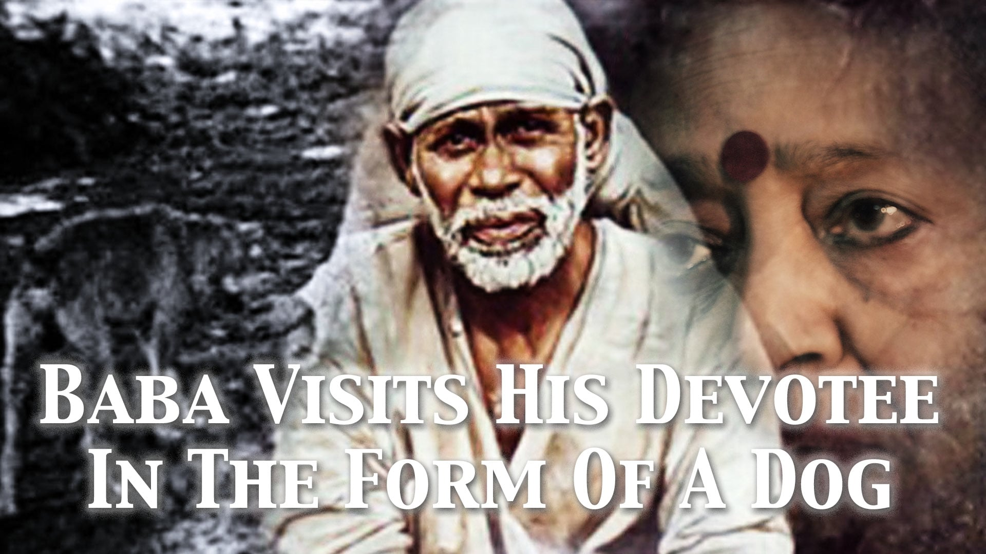 Baba visits His Devotee in the Form of a Dog