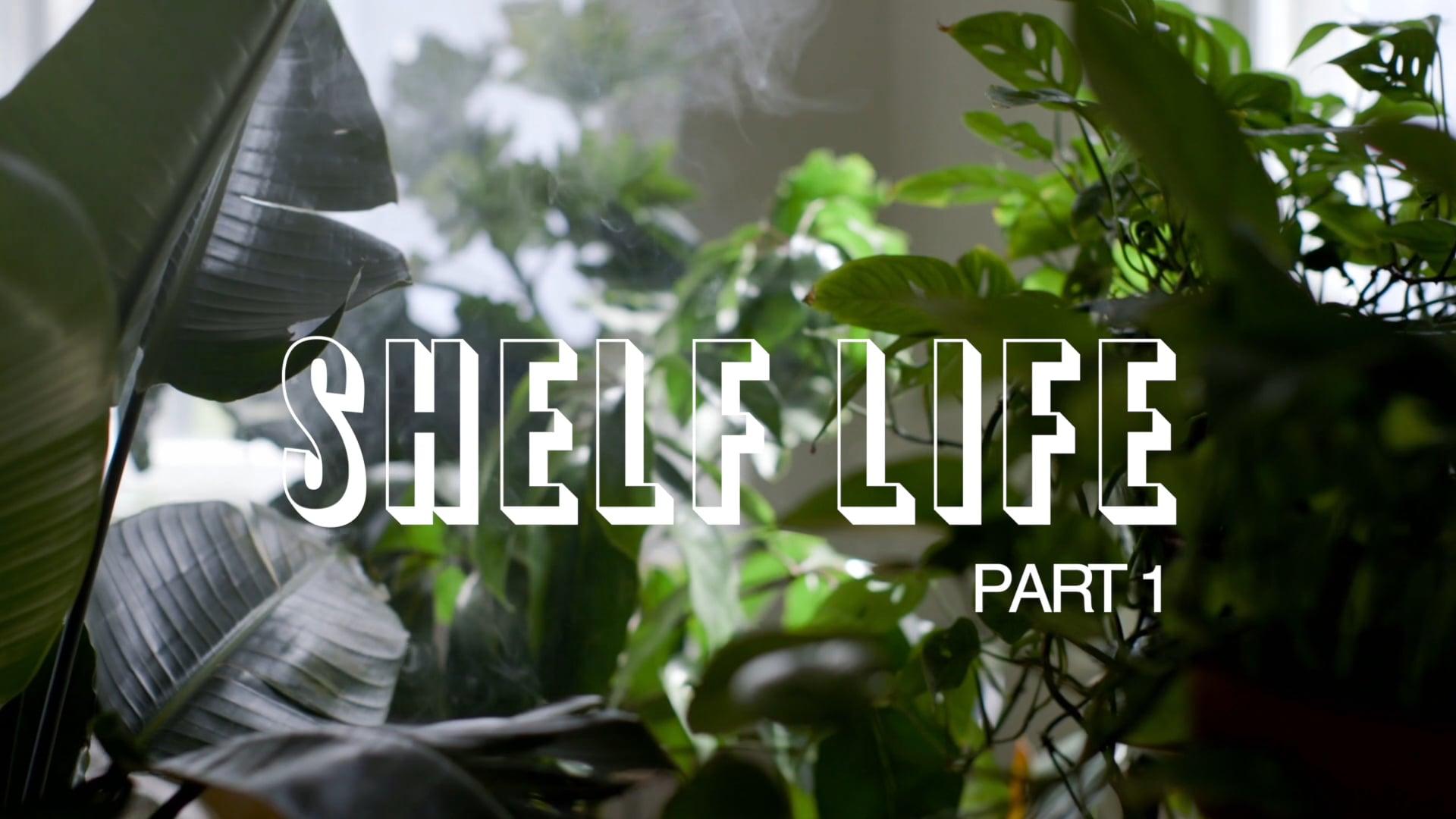 HOMESY X HILTON CARTER: Shelf Life Pt. 1
