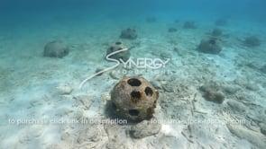 2193 reef ball artificial reef creation wide shot