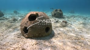 2195 2 shot reef ball artificial reef stock video