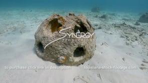 2200 reef balls man made artificial reef pan