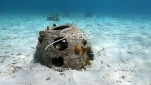 2201 underwater reef ball video stock footage