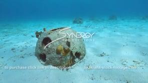 2202 reef ball coral reef restoration video