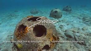 2210 nice shot artificial reef balls marine habitat creation