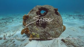 2211 artificial reef ball