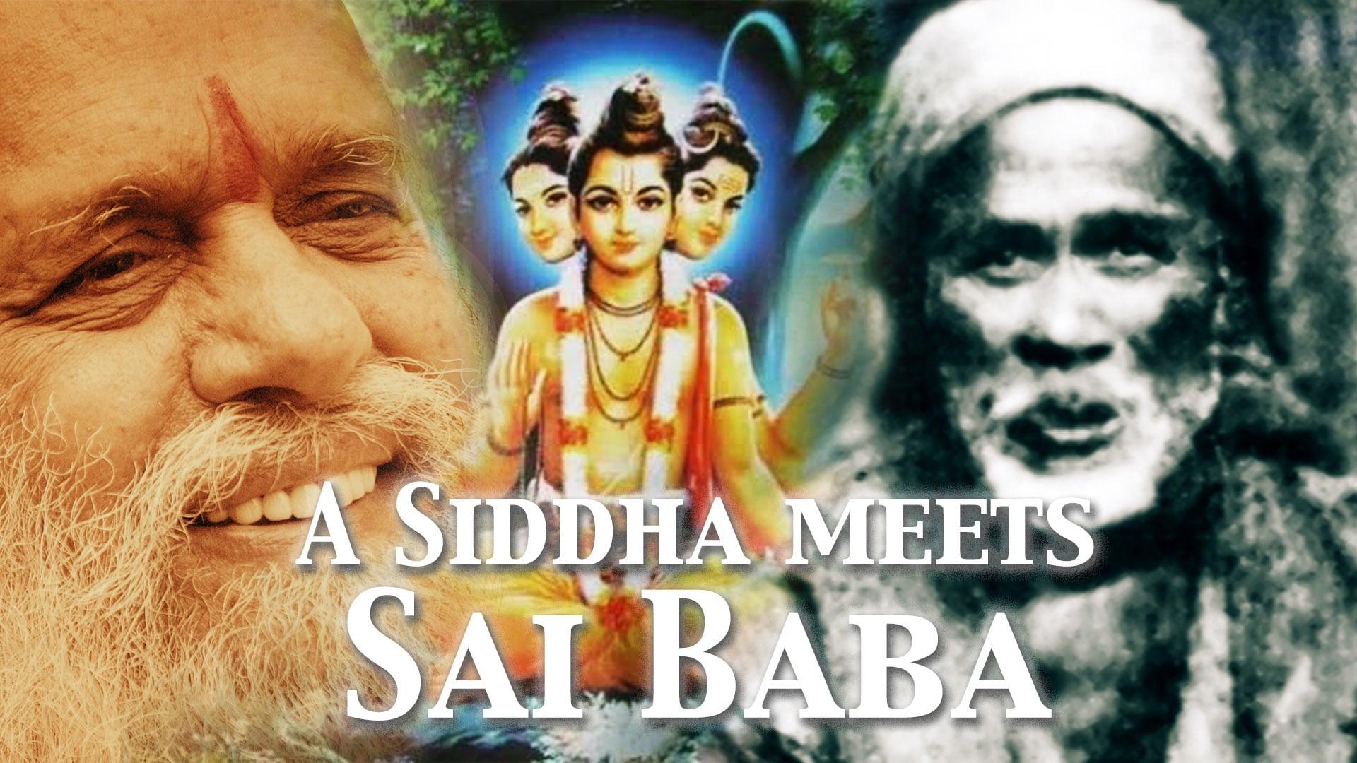 A Siddha meets Sai Baba