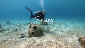2196 scuba diver swims by reef balls